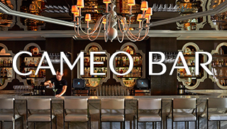 vsm-cameo-bar-with-logo-320x182